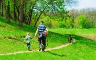 Физическое воспитание детей школьного возраста: роль семьи