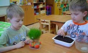 Экологическое воспитание детей дошкольного возраста: концепция